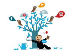 ideas contenido redes sociales
